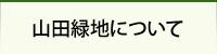 山田緑地について