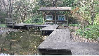 湿生生態園