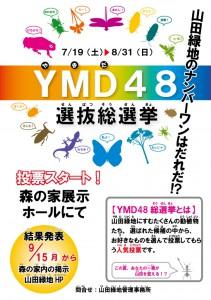 YMD48ポスター開催中