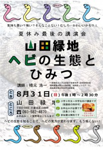 ヘビの生態とひみつチラシ_140604