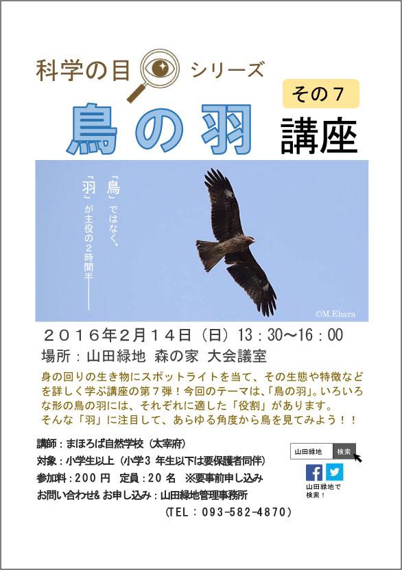 鳥の羽講座-トビver