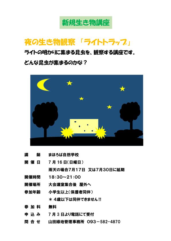 夜の生き物観察7月