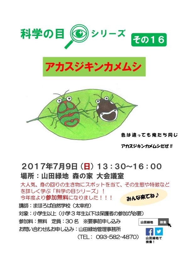 20170709- アカスジキンカメ