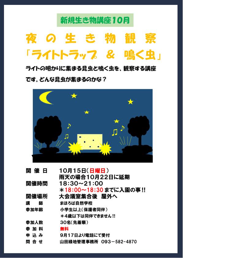 夜の生き物観察10-月鳴く虫