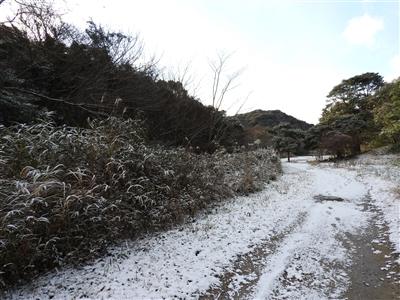 DSCN9780mini - 1月12日(金)本日開園しています!(雪情報)