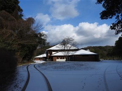 DSCN9799mini - 1月12日(金)本日開園しています!(雪情報)