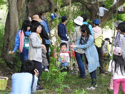 180429DSCN0304 - 4月29日(日)「山田の森の村づくり」