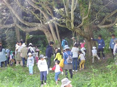 745b6067cbdb52ae7bbadc2d6f0e00ad - 4月29日(日)「山田の森の村づくり」