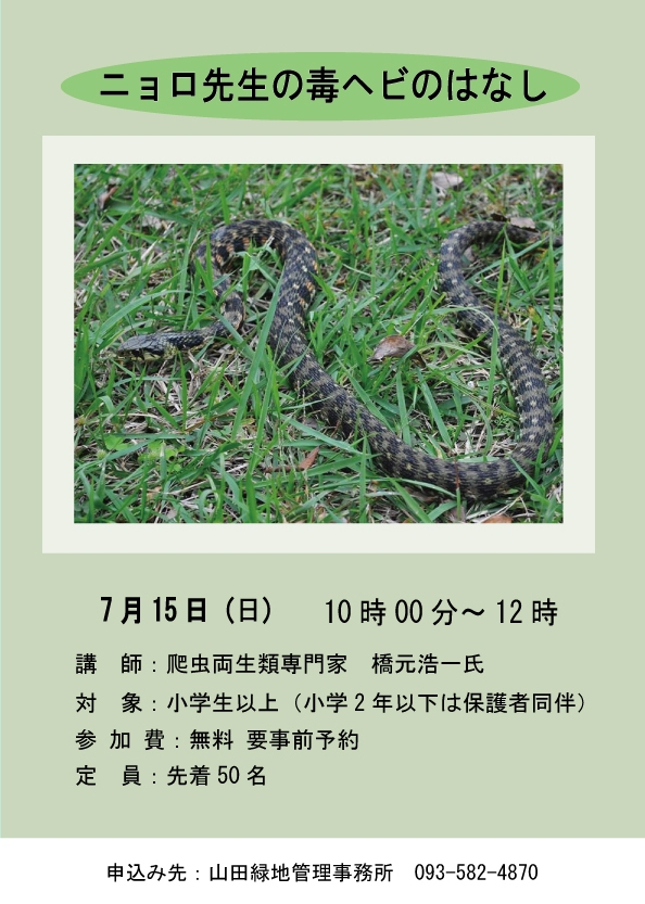 a7269c8bbd3c36d304daac1e3f162c97 - 7月15日(日)夏休み直前講座「ニョロ先生の毒ヘビのはなし」<終了しました>