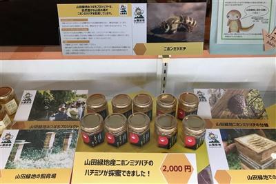 ニホンミツバチのハチミツ販売